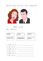 English worksheet: He - She