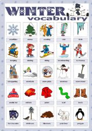 English Worksheets: Winter vocabulary