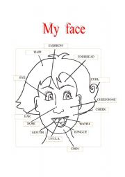 English Worksheets: My face