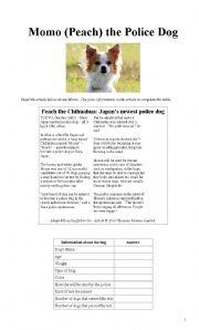 English Worksheets: Momo (Peach) the Police Dog
