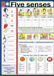 English Worksheet: BODY: Five senses
