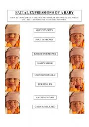 English Worksheet: Facial Expressions of a Baby
