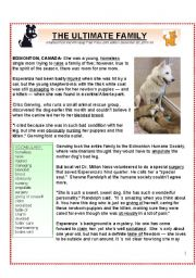 English Worksheets: A Christmas Tale:  Esperanza, the Ultimate Mother Dog (KEY included)