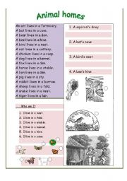 English Worksheets: Animal homes