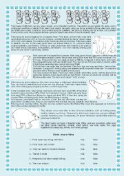 English Worksheets: POLAR BEARS - READING COMPREHENSION + 5 DIFFERENT EXERCISES