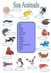 English Worksheet: Sea animals