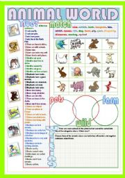 esl worksheets for beginners animal world. Black Bedroom Furniture Sets. Home Design Ideas