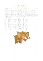 English Worksheets: Looking after elephants