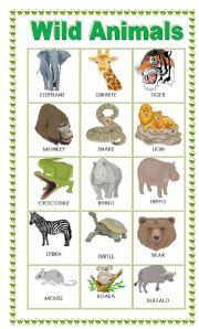 English Worksheets: Wild animals Pictionary