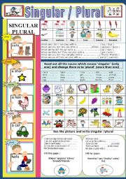 English Worksheets: Singular and Plural