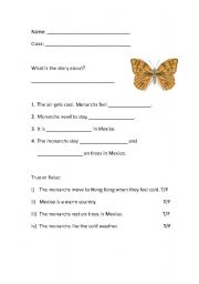 English Worksheets: Butterflies