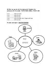 English Worksheets: 5 senses (3rd part)