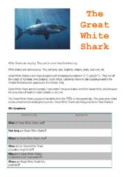 English Worksheets: The Great White Shark