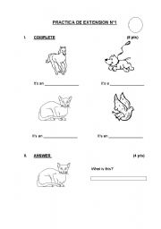 English Worksheets: IT�S / THEY�RE (ANIMALS)