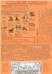 English Worksheets: Amazing animals PART 3