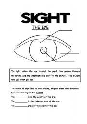 English Worksheets: 5 senses (4th part)