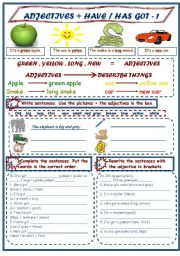 English Worksheet: ADJECTIVES + HAVE/HAS GOT 1/3