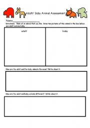 English teaching worksheets: Science
