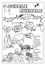 English Worksheet: JUNGLE ANIMALS WORKSHEET