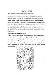 English Worksheets: Seahorses