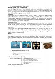 English Worksheets: Great Barrier reaf