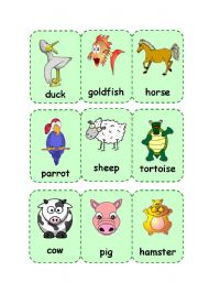 English Worksheets: Animals II