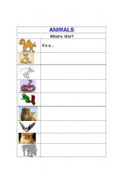 English Worksheets: Animals1