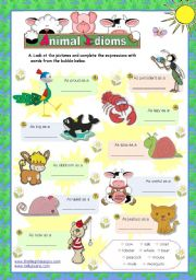 Animal idioms used everyday  - for elementary/ lower intermediate students