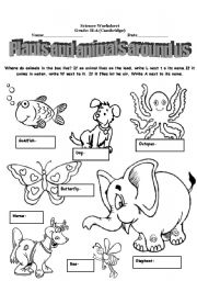 english worksheets plants and animals around us. Black Bedroom Furniture Sets. Home Design Ideas