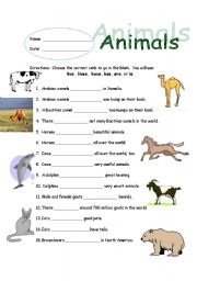 English Worksheet: Animal Subject/Verb Agreement
