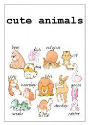 English Worksheets: cute animals