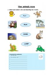 English Worksheets: How animals move
