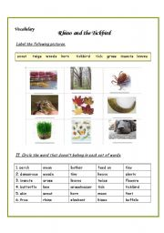 English Worksheets: write the words and Circle the word that doesn�t belong in each set of words.