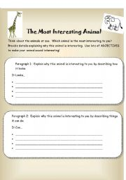 English Worksheets: The Most Interesting Animal Writing Organizer