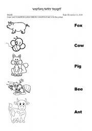English Worksheets: 3 letter word matching