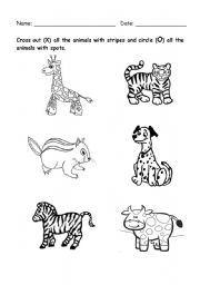 English Worksheets: animal with spots and stripes