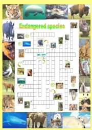 English Worksheet: Endangered species (Part 5/5): Crossword