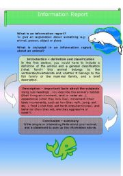 English worksheet: Information Report - Humpbacks