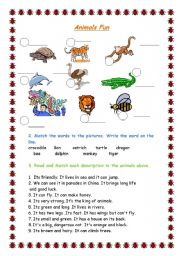 English Worksheets: animals fun
