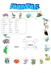 English Worksheets: GROUP THE ANIMALS