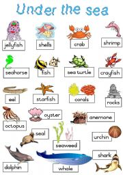 English Worksheet: Under the sea - Poster