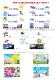 English worksheet: whats the weather like