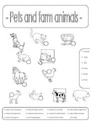 English Worksheet: Pets and farm animals (Number and colour)