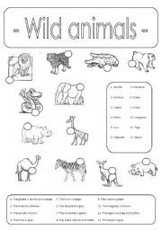 wild animals number and colour esl worksheet by edurne tudela. Black Bedroom Furniture Sets. Home Design Ideas