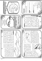 English Worksheets: Let�s Learn About Dolphins: Elementary Level (mini-book)