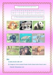 English Worksheets: Endangered animals3/3