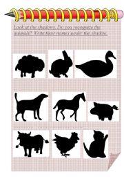 English Worksheets: Animals shadows
