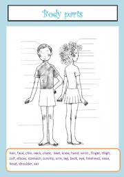 English Worksheets: body parts - vocabulary