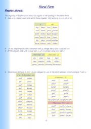 English Worksheets: A lesson on plural forms in English (regular and irregular ,foreign words too)