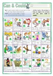 English Worksheet: Can or Could